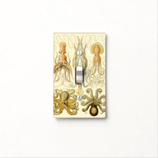 Vintage Octopus Squid Gamochonia by Ernst Haeckel Light Switch Cover