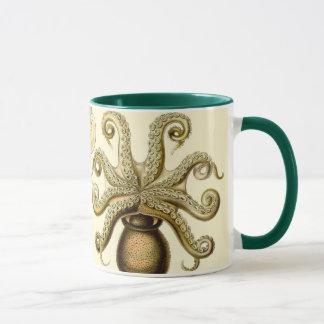 Vintage Octopus Squid Gamochonia by Ernst Haeckel Mug