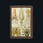 """Vintage Octopus Squid Gamochonia by Ernst Haeckel Tri-fold Wallet<br><div class=""""desc"""">Vintage illustration nature marine life biology design by Ernst Haeckel. A variety of giant squid and octopi animals commonly found in the ocean waters.</div>"""