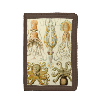 Vintage Octopus Squid Gamochonia by Ernst Haeckel Trifold Wallets
