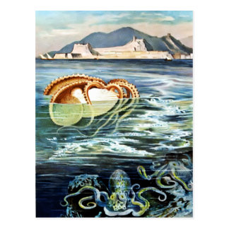 Vintage Octopus & Squid Postcard