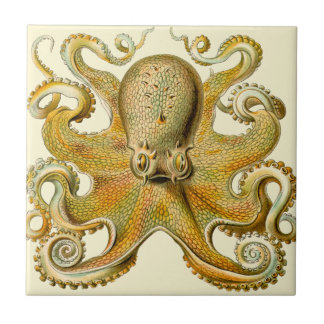Vintage Octopus Small Square Tile