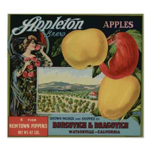 Vintage Old Apple Fruit Crate Labels Posters