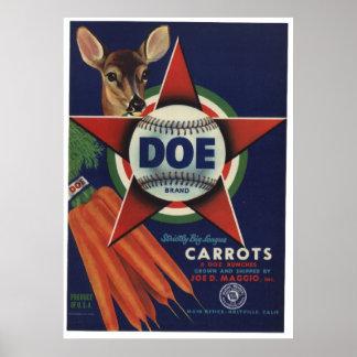 Vintage Old Carrots Vegetables Crate Labels Print