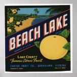 Vintage Old Citrus Fruit Crate Labels Poster