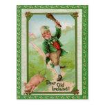 Vintage Old Dear Ireland Card Post Card