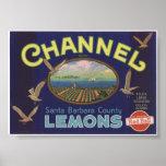 Vintage Old Lemons Fruit Crate Labels Poster