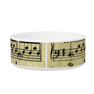 Vintage Old Music Notes Paper Texture Bowl