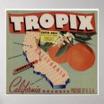 Vintage Old Oranges Fruit Crate Labels Poster