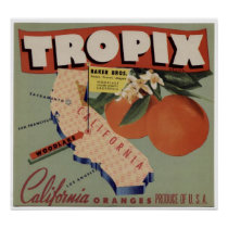Vintage Old Oranges Fruit Crate Labels Poster
