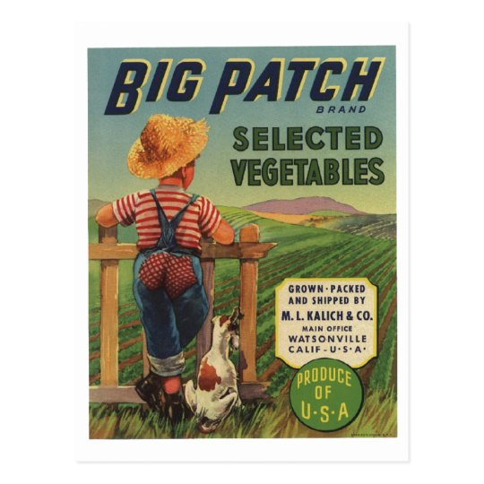 Vintage Old Retro Crate Product Goods Label Veggie Postcard