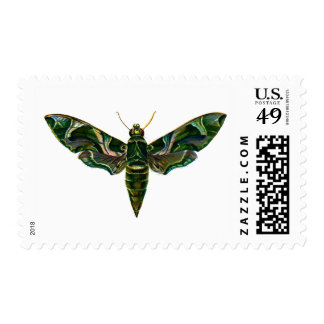 Vintage Oleander Hawk-moth Postage Stamp
