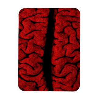 Vintage On The Brain Premium Magnet