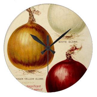 Vintage onion chart illustration clock
