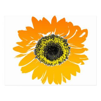 Vintage Orange and Yellow Sunflower Postcard