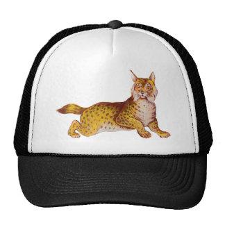 Vintage Orange Bobcat Illustration Trucker Hat