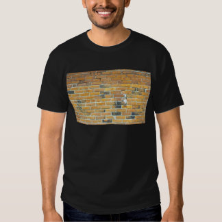 Vintage Orange Brick Wall Texture Shirt