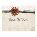 Vintage Orange Daisy Save The Date Postcard