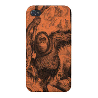 Vintage Orange Orangutan Illustration - Monkey Cover For iPhone 4