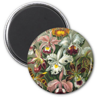 Vintage Orchids 2 Inch Round Magnet