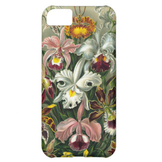Vintage Orchids Case For iPhone 5C