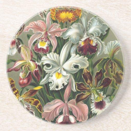 Vintage Orchids Coaster