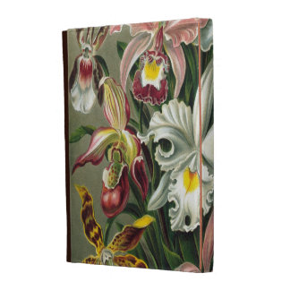 Vintage Orchids iPad Folio Case