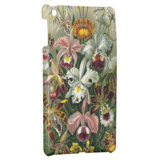 Vintage Orchids iPad Mini Case