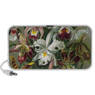 Vintage Orchids iPhone Speaker