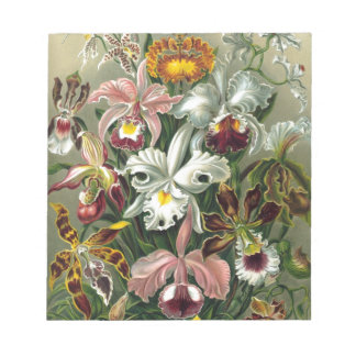 Vintage Orchids Memo Notepad