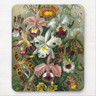 Vintage Orchids Mouse Pad
