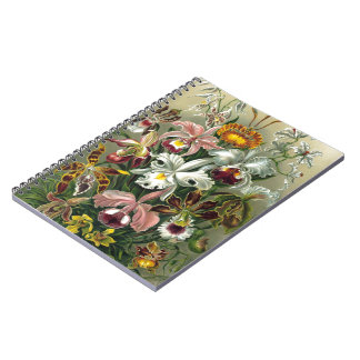 Vintage Orchids Notebooks