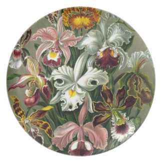 Vintage Orchids Party Plate