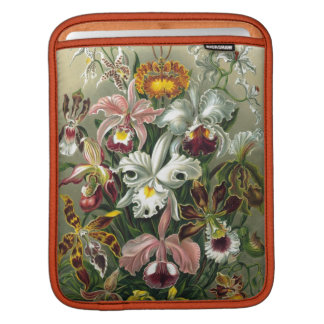 Vintage Orchids Sleeve For iPads