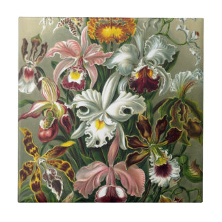 Vintage Orchids Small Square Tile
