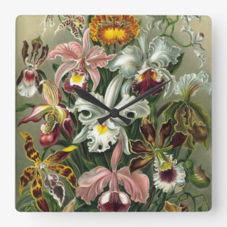 Vintage Orchids Square Wall Clocks