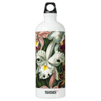 Vintage Orchids Water Bottle