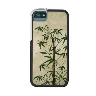 Vintage Oriental Bamboo 1 iPhone 5/5S Cover