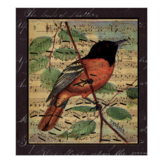 Vintage Oriole On  Music Poster