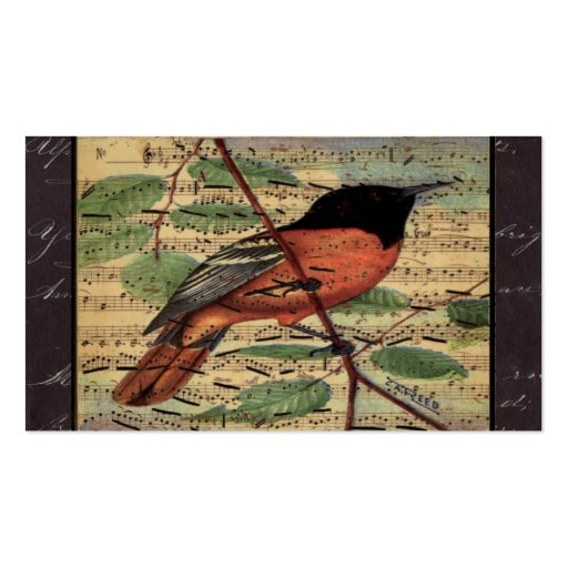 Vintage Oriole On Old Music Double-Sided Standard Business Cards (Pack Of 100)