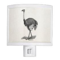 Vintage Ostrich Bird Antique Birds Template Night Light