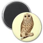 Vintage Owl Art Magnet