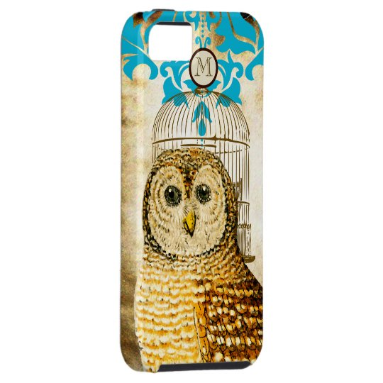 Vintage Owl Birdcage Damask iPhone Case