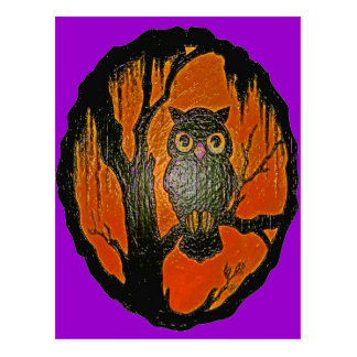 Vintage Owl cartoon Art Post Card