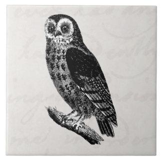 Vintage Owl Drawing Retro Birds Owls Tile