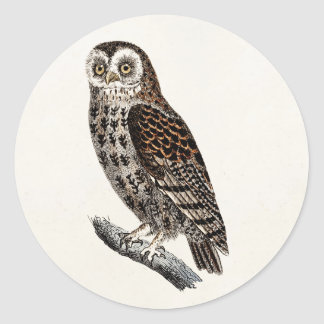 Vintage Owl Illustration - 1800's Birds Templates Classic Round Sticker