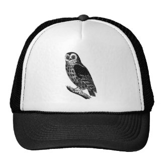 Vintage Owl Illustration Retro Antique Bird Owls Trucker Hat