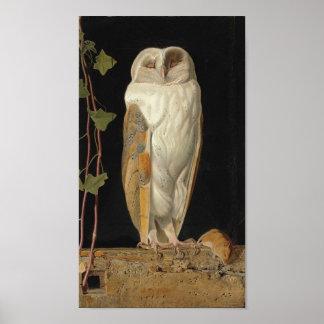 Vintage Owl Image Poster