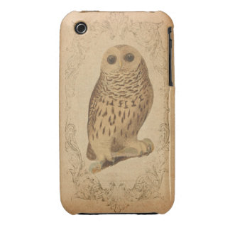 Vintage Owl in Frame iPhone 3 Case-Mate Cases