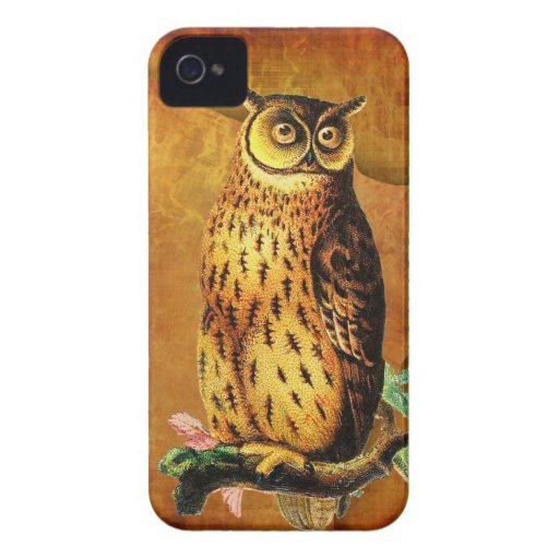Vintage Owl iPhone 4 Covers